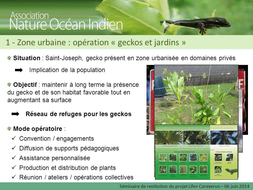 1 - Zone urbaine : opération « geckos et jardins » Situation : Saint-Joseph, gecko présent en zone urbanisée en domaines privés Objectif : maintenir à