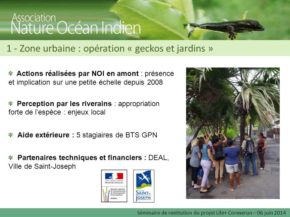 1 - Zone urbaine : opération « geckos et jardins » Séminaire de restitution du projet Life+ Corexerun – 06 juin 2014 Actions réalisées par NOI en amon