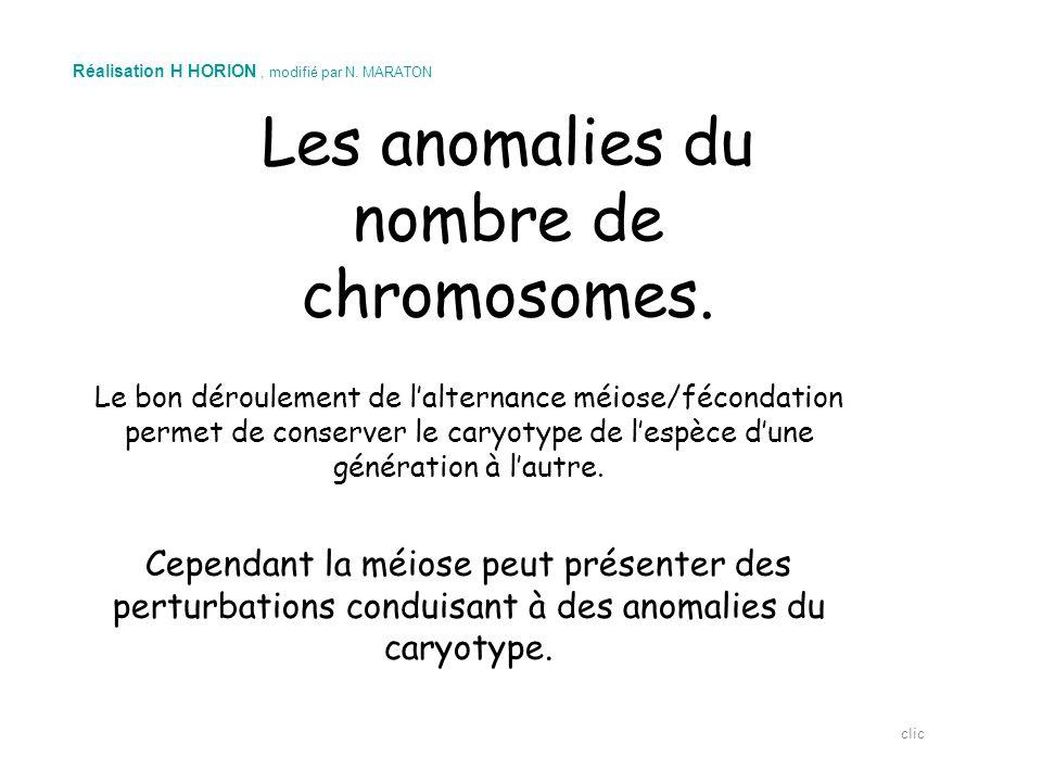 Les anomalies du nombre de chromosomes. Le bon déroulement de l'alternance méiose/fécondation permet de conserver le caryotype de l'espèce d'une génér