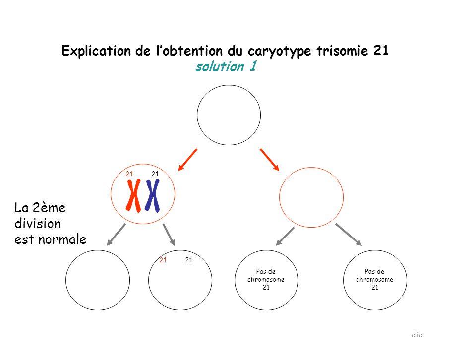 Explication de l'obtention du caryotype trisomie 21 solution 1 21  Tous les gamètes formés ici sont anormaux clic Pas de chromosome 21