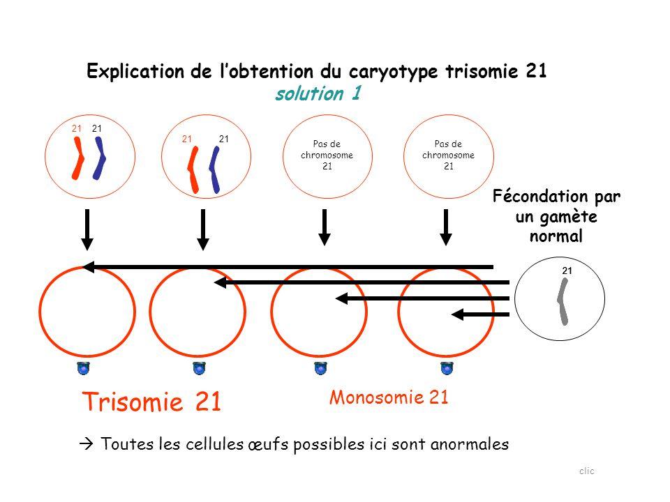 Explication de l'obtention du caryotype trisomie 21 solution 1 21 Fécondation par un gamète normal 21 Trisomie 21 Monosomie 21  Toutes les cellules œufs possibles ici sont anormales Pas de chromosome 21 clic
