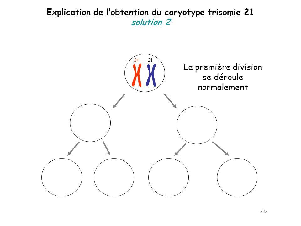 Explication de l'obtention du caryotype trisomie 21 solution 2 21 L'erreur se produit lors de la seconde division de la méiose clic