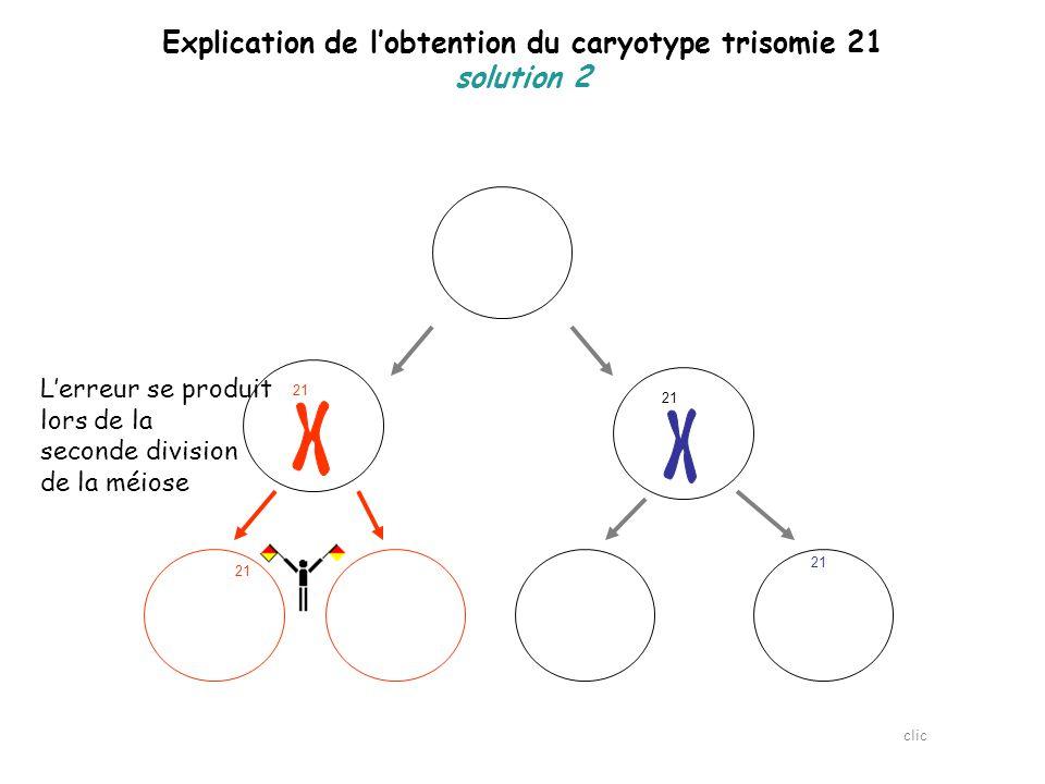 Explication de l'obtention du caryotype trisomie 21 solution 2 21  Seuls 2 gamètes sont anormaux clic