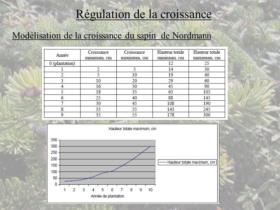 Régulation de la croissance Modélisation de la croissance du sapin de Nordmann