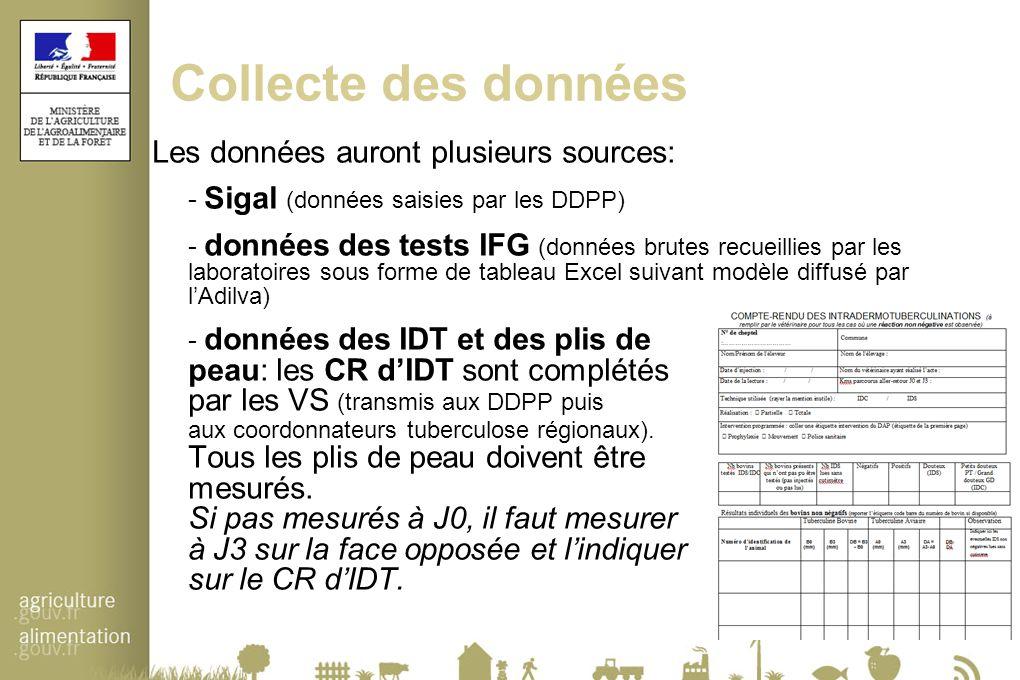 Collecte des données Les données auront plusieurs sources: - Sigal (données saisies par les DDPP) - données des tests IFG (données brutes recueillies