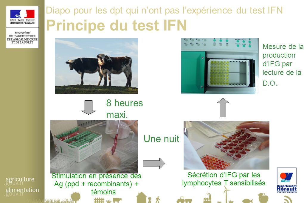Diapo pour les dpt qui n'ont pas l'expérience du test IFN Principe du test IFN 8 heures maxi. Une nuit Mesure de la production d'IFG par lecture de la