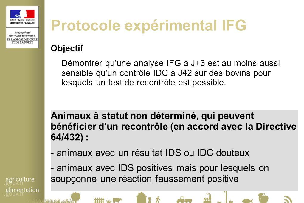 Protocole expérimental IFG Objectif Démontrer qu'une analyse IFG à J+3 est au moins aussi sensible qu'un contrôle IDC à J42 sur des bovins pour lesque