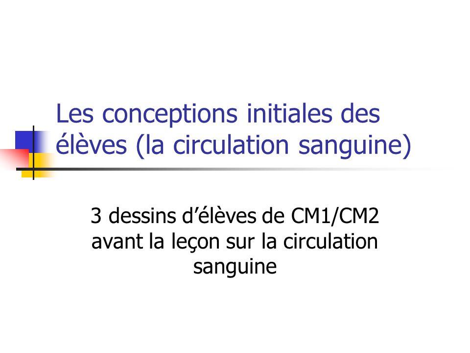 Les conceptions initiales des élèves (la circulation sanguine) 3 dessins d'élèves de CM1/CM2 avant la leçon sur la circulation sanguine