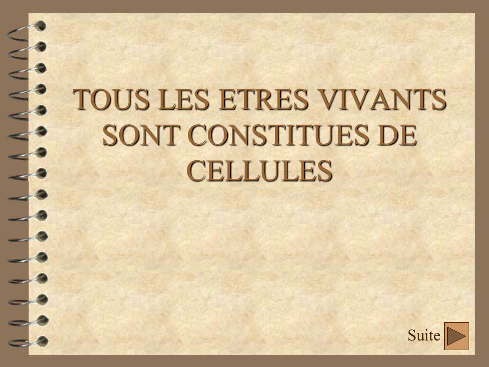 TOUS LES ETRES VIVANTS SONT CONSTITUES DE CELLULES Suite