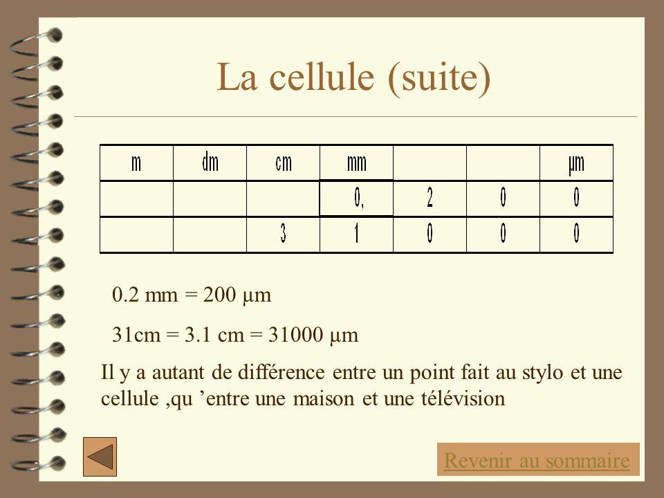 La cellule (suite) 0.2 mm = 200 µm 31cm = 3.1 cm = 31000 µm Revenir au sommaire Il y a autant de différence entre un point fait au stylo et une cellul
