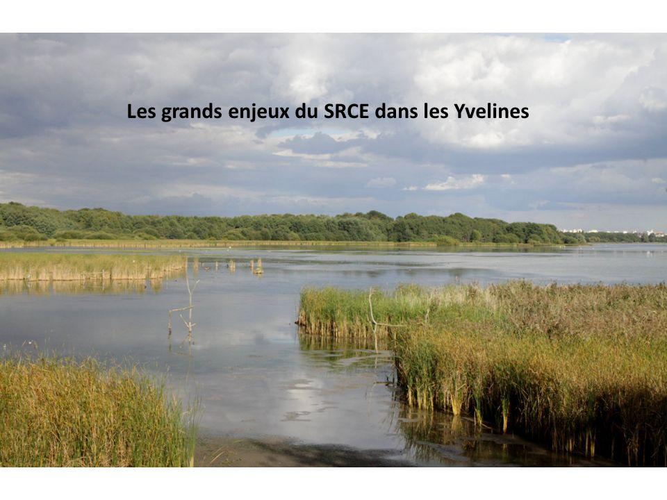 Les grands enjeux du SRCE dans les Yvelines