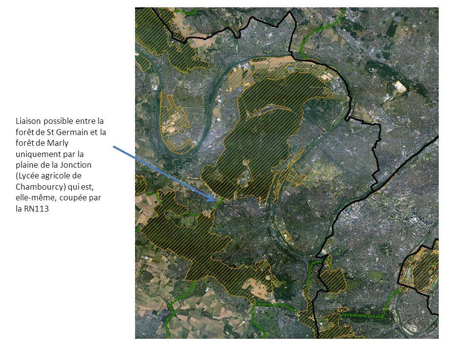 Liaison possible entre la forêt de St Germain et la forêt de Marly uniquement par la plaine de la Jonction (Lycée agricole de Chambourcy) qui est, ell