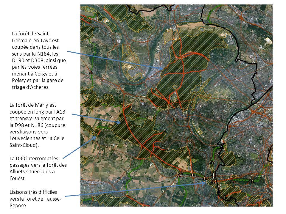 La forêt de Saint- Germain-en-Laye est coupée dans tous les sens par la N184, les D190 et D308, ainsi que par les voies ferrées menant à Cergy et à Po