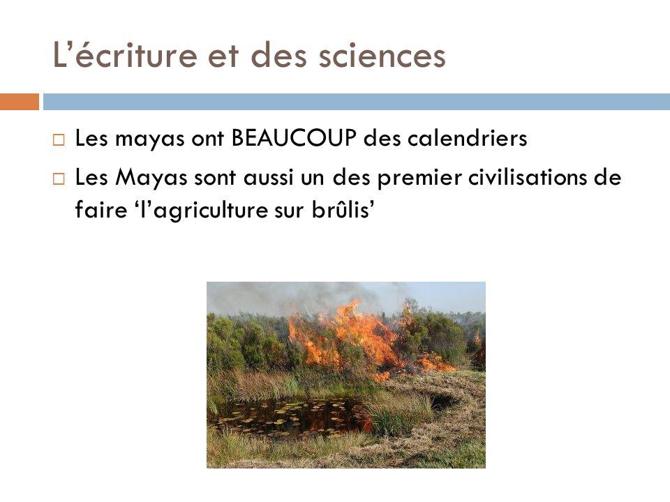 L'écriture et des sciences  Les mayas ont BEAUCOUP des calendriers  Les Mayas sont aussi un des premier civilisations de faire 'l'agriculture sur br