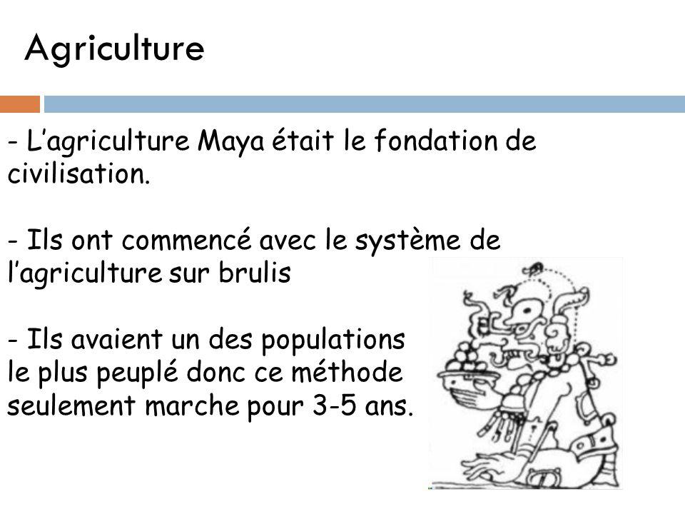 Agriculture - L'agriculture Maya était le fondation de civilisation. - Ils ont commencé avec le système de l'agriculture sur brulis - Ils avaient un d