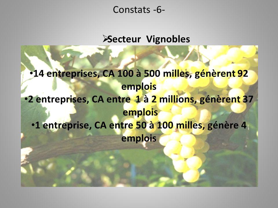 Constats -6-  Secteur Vignobles 14 entreprises, CA 100 à 500 milles, génèrent 92 emplois 2 entreprises, CA entre 1 à 2 millions, génèrent 37 emplois 1 entreprise, CA entre 50 à 100 milles, génère 4 emplois