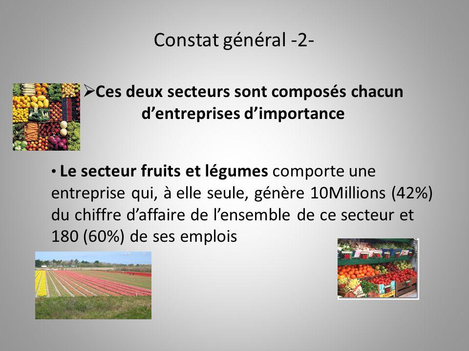 Constat général -2-  Ces deux secteurs sont composés chacun d'entreprises d'importance Le secteur fruits et légumes comporte une entreprise qui, à elle seule, génère 10Millions (42%) du chiffre d'affaire de l'ensemble de ce secteur et 180 (60%) de ses emplois
