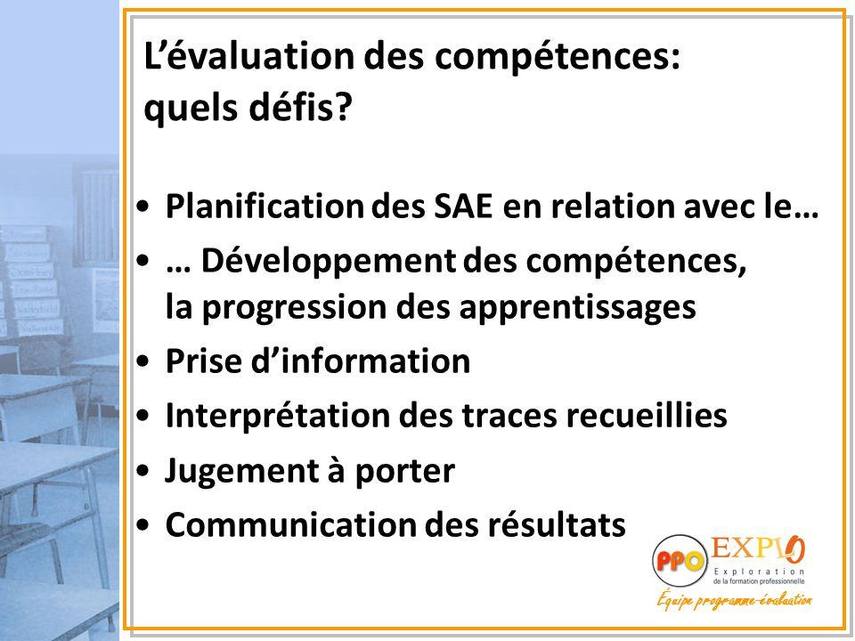Planification des SAE en relation avec le… … Développement des compétences, la progression des apprentissages Prise d'information Interprétation des t