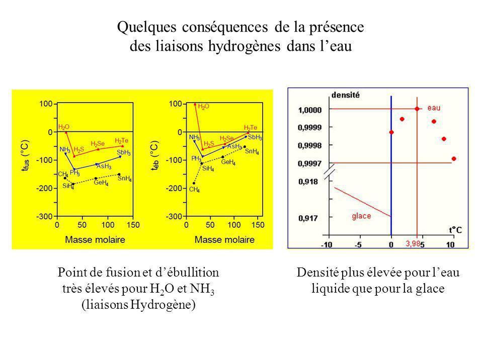 Quelques conséquences de la présence des liaisons hydrogènes dans l'eau Point de fusion et d'ébullition très élevés pour H 2 O et NH 3 (liaisons Hydro