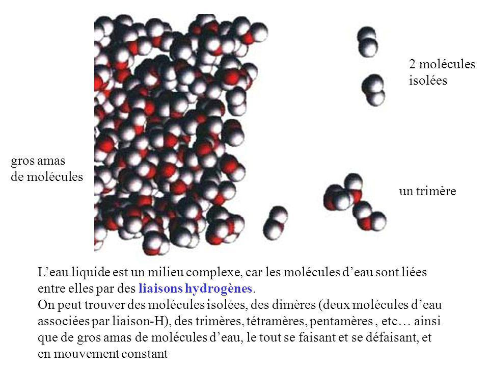 L'eau liquide est un milieu complexe, car les molécules d'eau sont liées entre elles par des liaisons hydrogènes. On peut trouver des molécules isolée