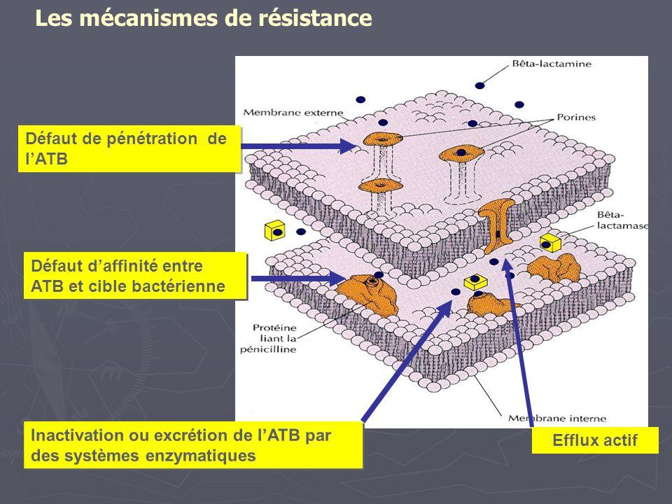 Défaut de pénétration de l'ATB Inactivation ou excrétion de l'ATB par des systèmes enzymatiques Défaut d'affinité entre ATB et cible bactérienne Efflu