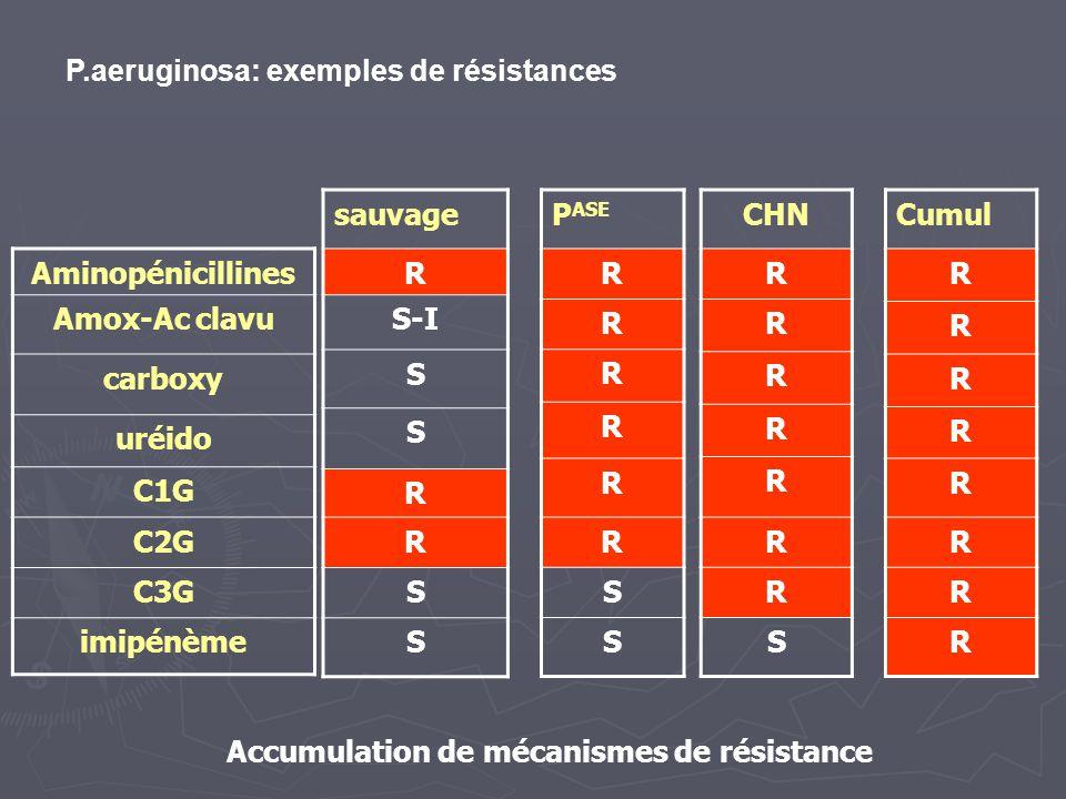 Aminopénicillines Amox-Ac clavu carboxy uréido C1G C2G C3G imipénème sauvage R S-I S S R R S S P ASE R R R R R R S S CHN R R R R R R R S Cumul R R R R