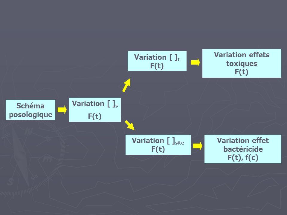 Schéma posologique Variation [ ] s F(t) Variation [ ] t F(t) Variation [ ] site F(t) Variation effets toxiques F(t) Variation effet bactéricide F(t),