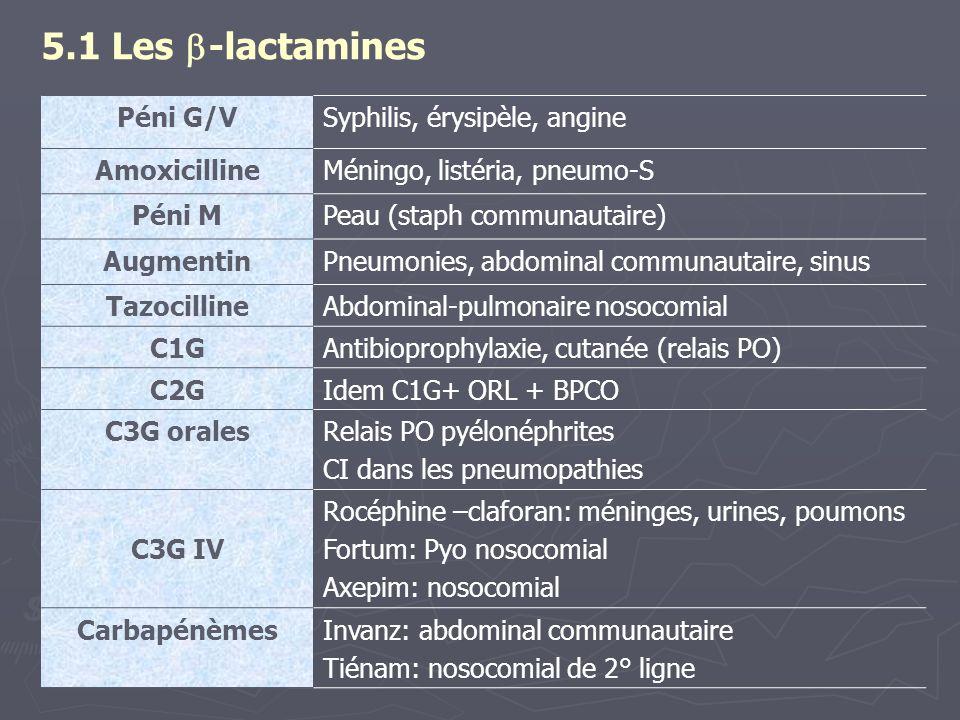 5.1 Les  -lactamines Péni G/VSyphilis, érysipèle, angine AmoxicillineMéningo, listéria, pneumo-S Péni MPeau (staph communautaire) AugmentinPneumonies