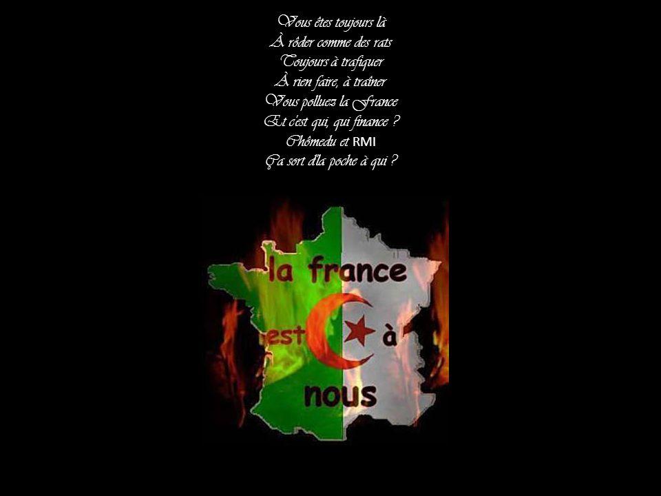 Vous êtes toujours là À rôder comme des rats Toujours à trafiquer À rien faire, à traîner Vous polluez la France Et c est qui, qui finance .