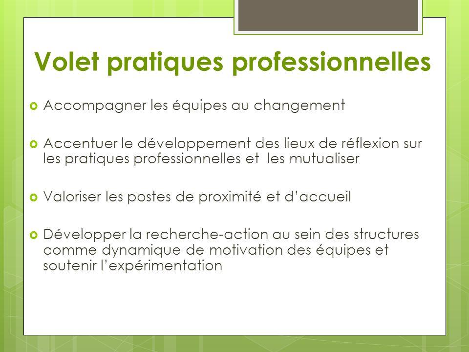 Volet pratiques professionnelles  Accompagner les équipes au changement  Accentuer le développement des lieux de réflexion sur les pratiques profess