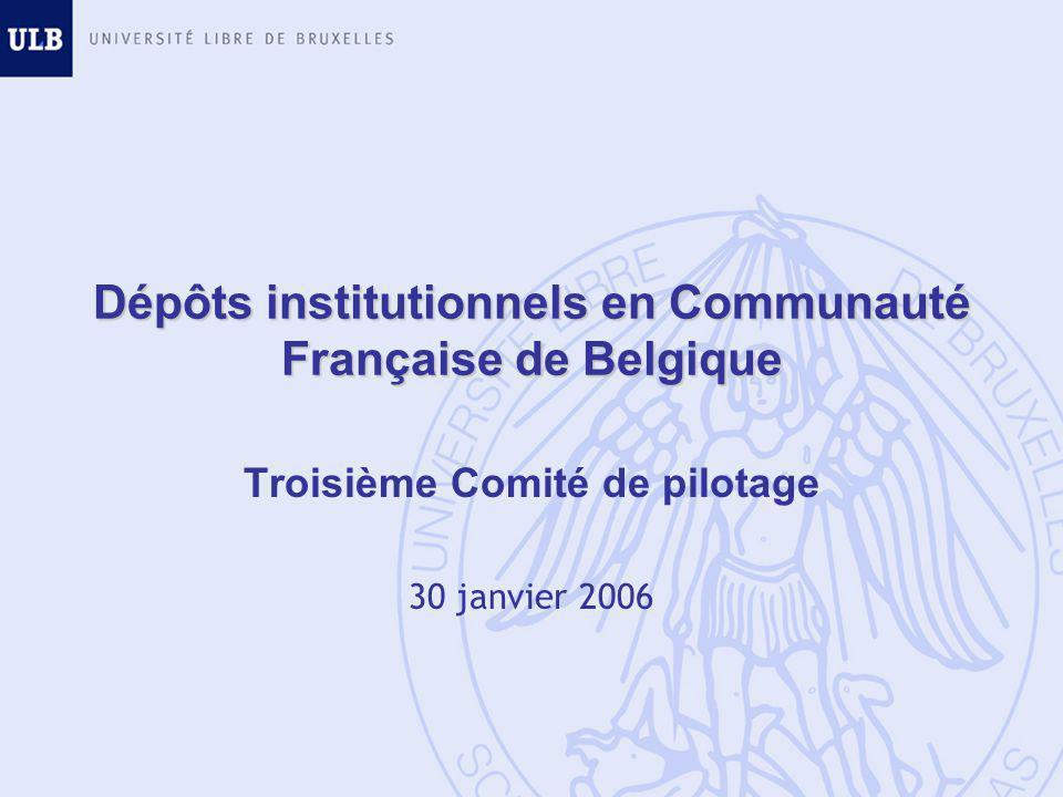 Dépôts institutionnels en Communauté Française de Belgique Troisième Comité de pilotage 30 janvier 2006