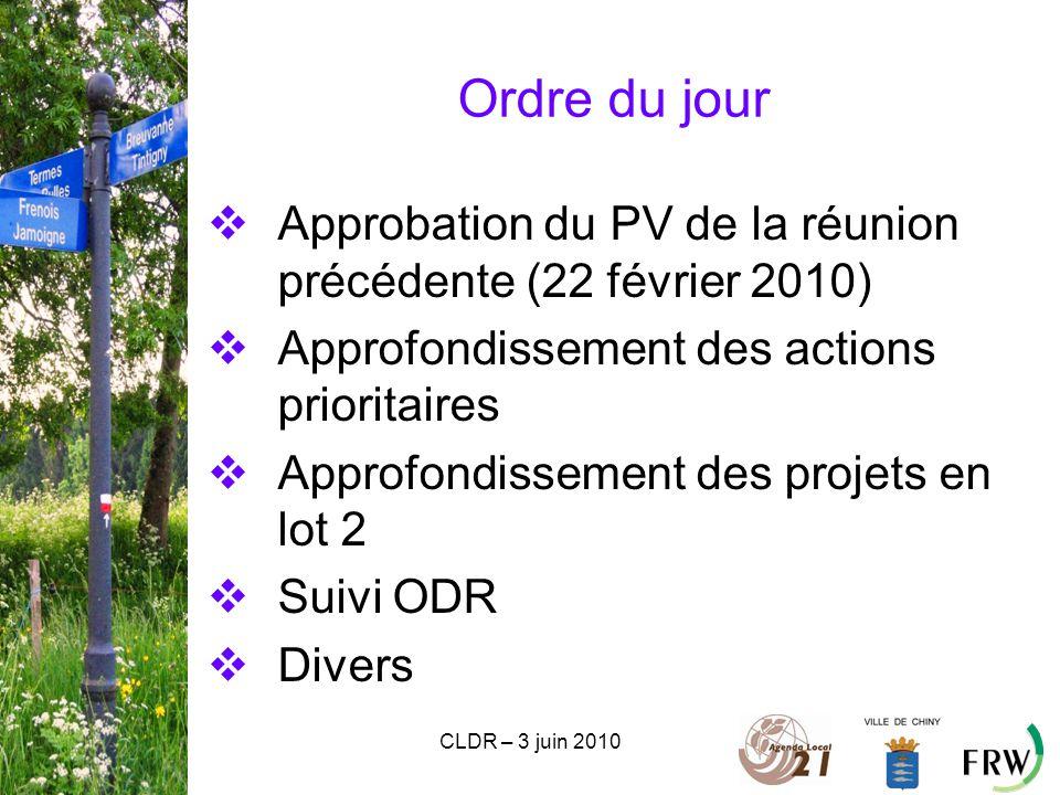 CLDR – 3 juin 2010 Ordre du jour  Approbation du PV de la réunion précédente (22 février 2010)  Approfondissement des actions prioritaires  Approfondissement des projets en lot 2  Suivi ODR  Divers
