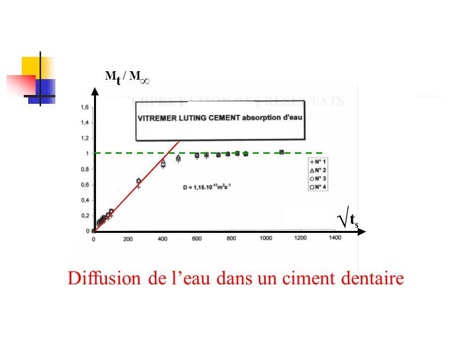 t M/ M ∞ √ t s Diffusion de l'eau dans un ciment dentaire
