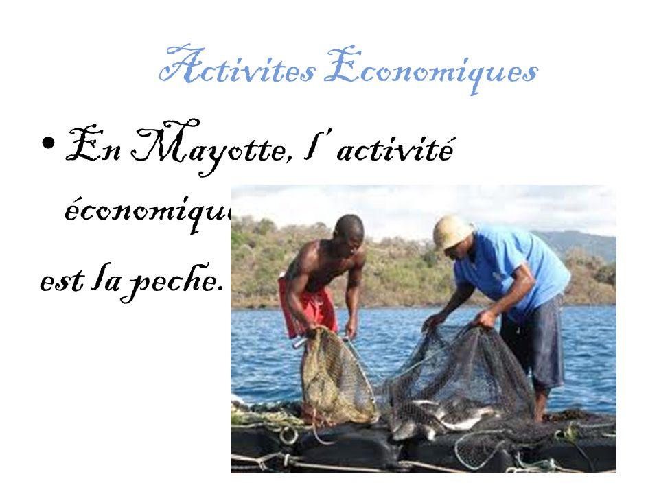 Activites Economiques En Mayotte, l' activité économique est la peche.