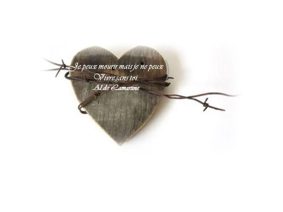 La courbe de tes yeux fait le tour de mon cœur …. P. Eluard