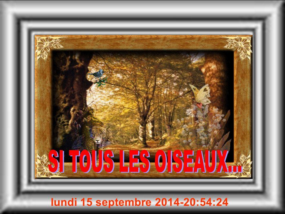 lundi 15 septembre 2014 -20:55:59