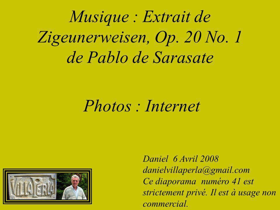 L'auteur Michel Lauwers vit à Tongrinne (Sombreffe), en Belgique. Ce licencié en communication sociale travaille comme journaliste pour un quotidien b
