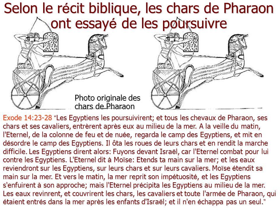 Selon le r é cit biblique, les chars de Pharaon ont essay é de les poursuivre Photo originale des chars de Pharaon Exode 14:23-28 Les Egyptiens les poursuivirent; et tous les chevaux de Pharaon, ses chars et ses cavaliers, entrèrent après eux au milieu de la mer.