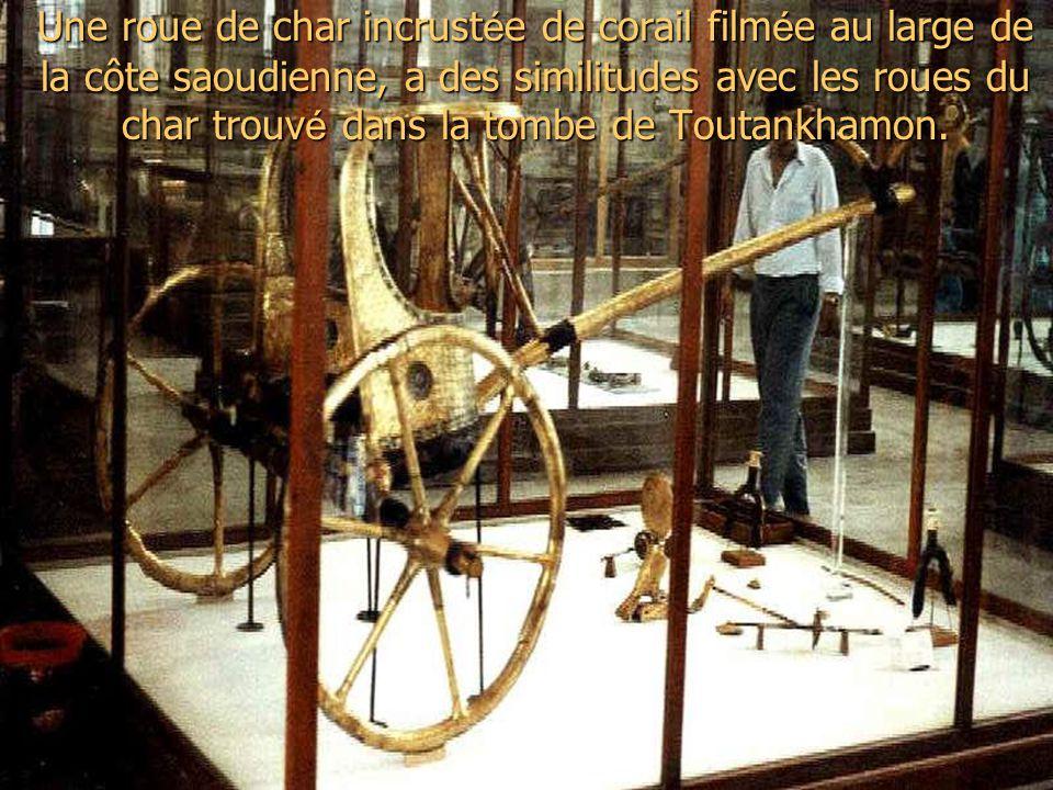 Une roue de char incrust é e de corail film é e au large de la côte saoudienne, a des similitudes avec les roues du char trouv é dans la tombe de Toutankhamon.