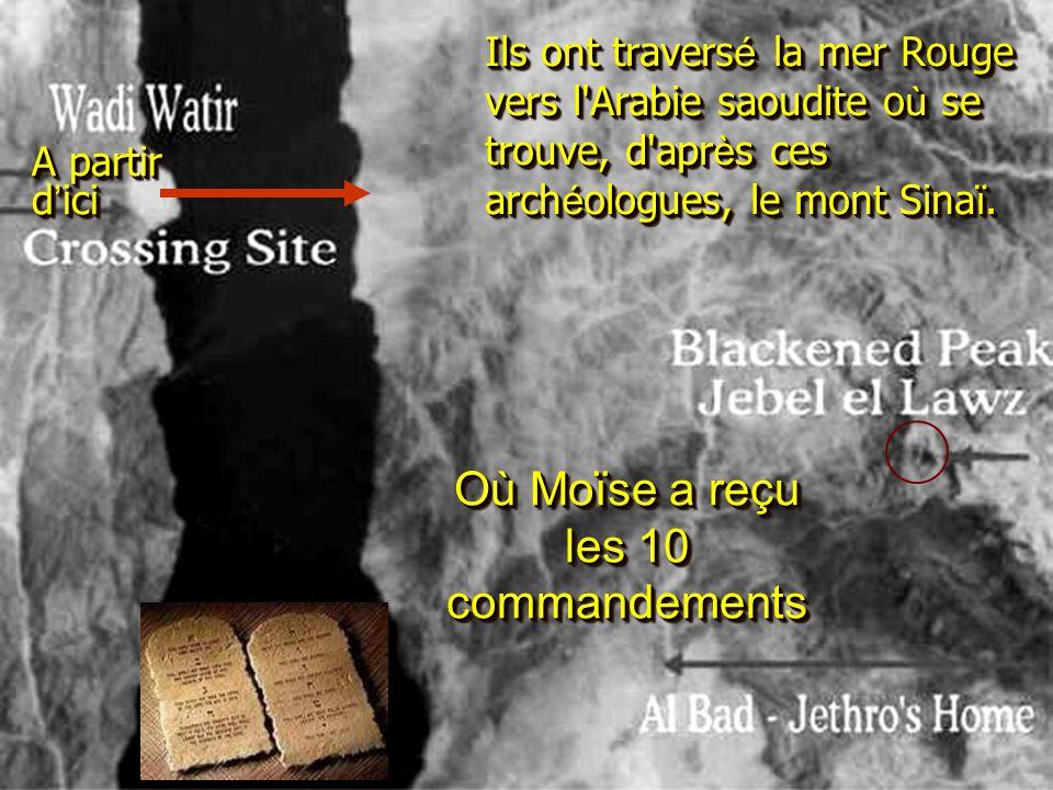Ils ont travers é la mer Rouge vers l Arabie saoudite o ù se trouve, d apr è s ces arch é ologues, le mont Sina ï.