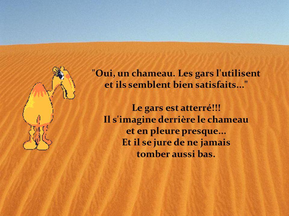 Oui, un chameau. Les gars l utilisent et ils semblent bien satisfaits... Le gars est atterré!!.
