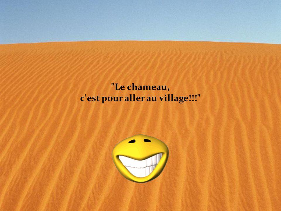 Le chameau, c est pour aller au village!!!