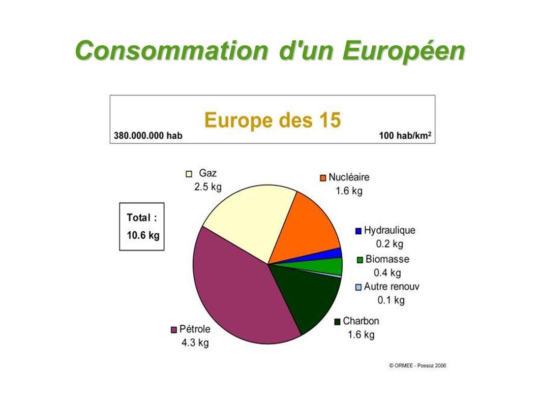 Consommation d'un Européen
