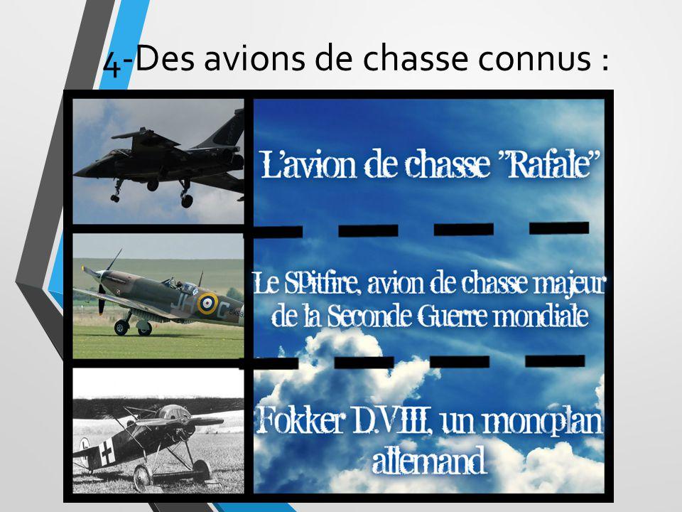 4-Des avions de chasse connus :