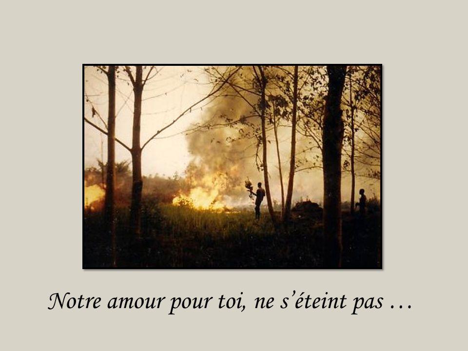 A l'image de ces feux de brousse,