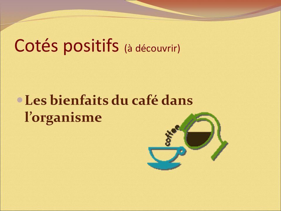 Cotés positifs (à découvrir) Les bienfaits du café dans l'organisme