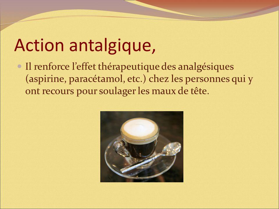 Artères cérébrales Le café exerce une action vasoconstrictrice sur des artères cérébrales et permet de lutter contre les migraines et les céphalées ch