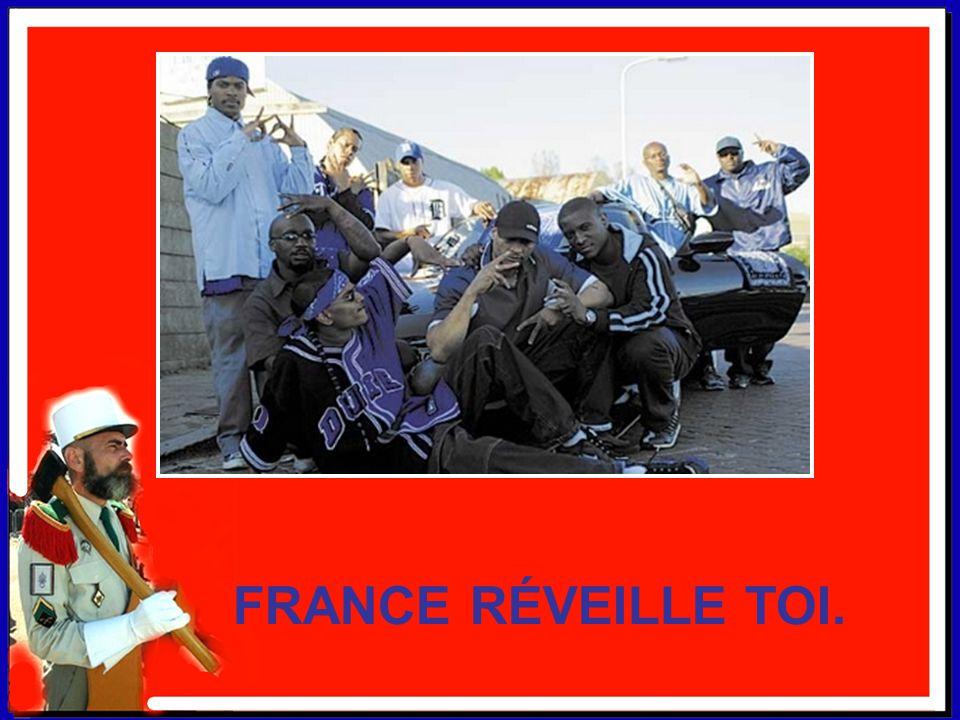 FAITES DONNER LA LÉGION. Ma France n'a que faire de tous les clandestins. Et autres sans-papiers qui gâchent notre quotidien. Il faut les renvoyer man