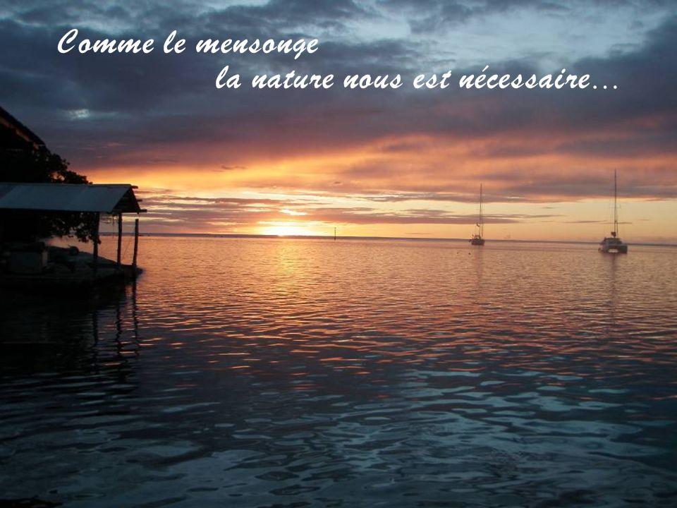 Martinique – Anse Couleuvre B.Gispert Il est 22:49 h. 15 septembre 2014