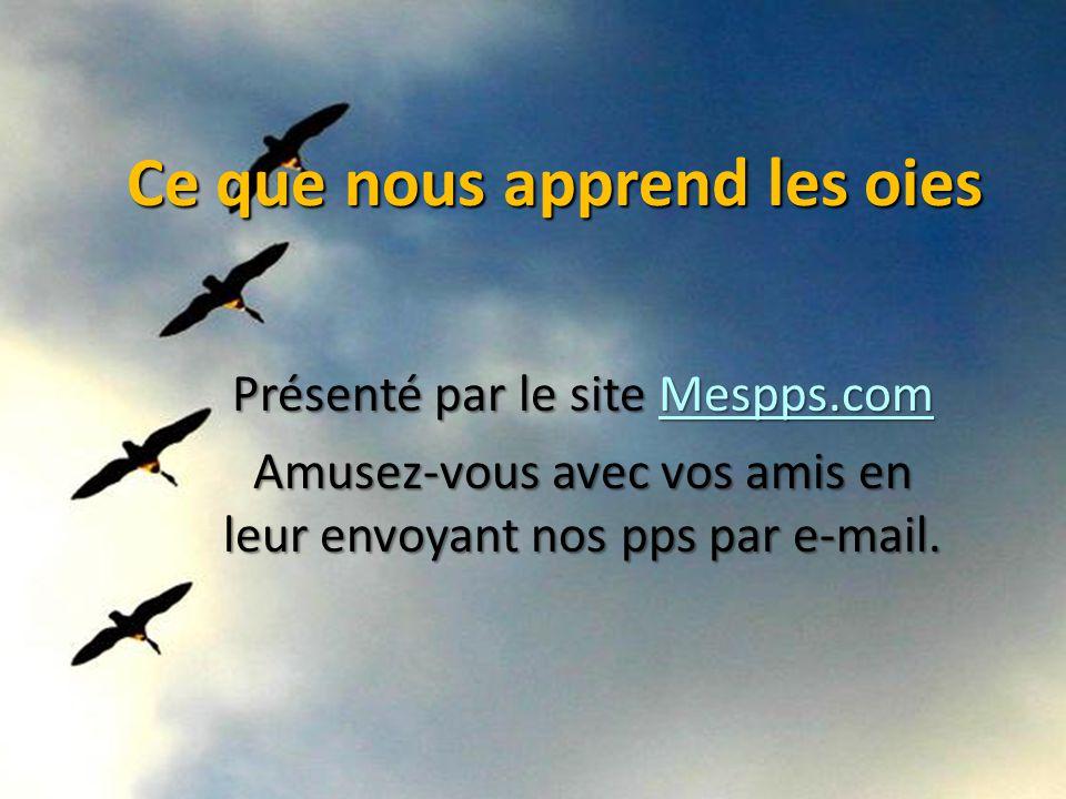 Ce que nous apprend les oies Présenté par le site Mespps.com Mespps.com Amusez-vous avec vos amis en leur envoyant nos pps par e-mail.